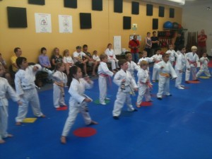 Tiny Tigers II at Family Martial Arts Academy Beaverton, Oregon 97008