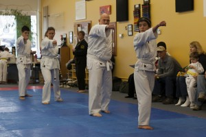 Beginning Adults and Older Juniors Learn Karate in a fun, safe atmosphere at Family Martial Arts Academy, Beaverton, OR 97008